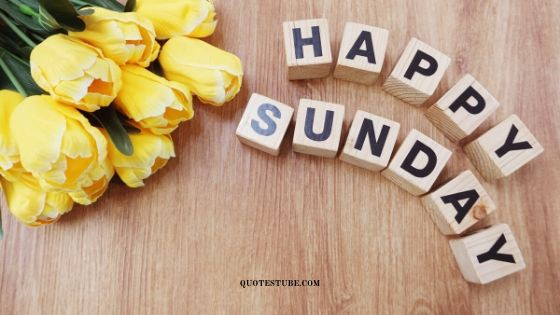 150+ Good Morning Happy Sunday – Images Wishes & Blessings
